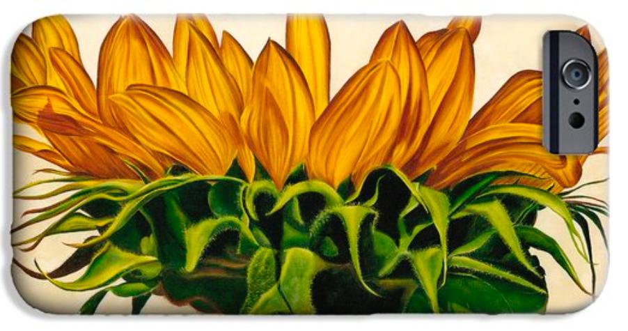 Sunlit iPhone 6 Case